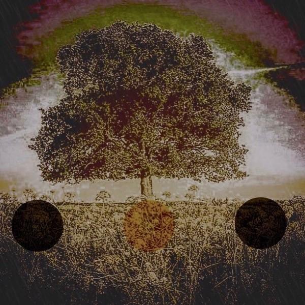 Preston Tree